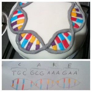 CakeDNA