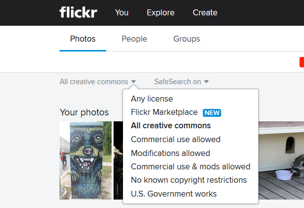 FlickrRaccoons