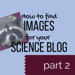 How to find images for your science blog