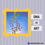 How has DNA inspired art?