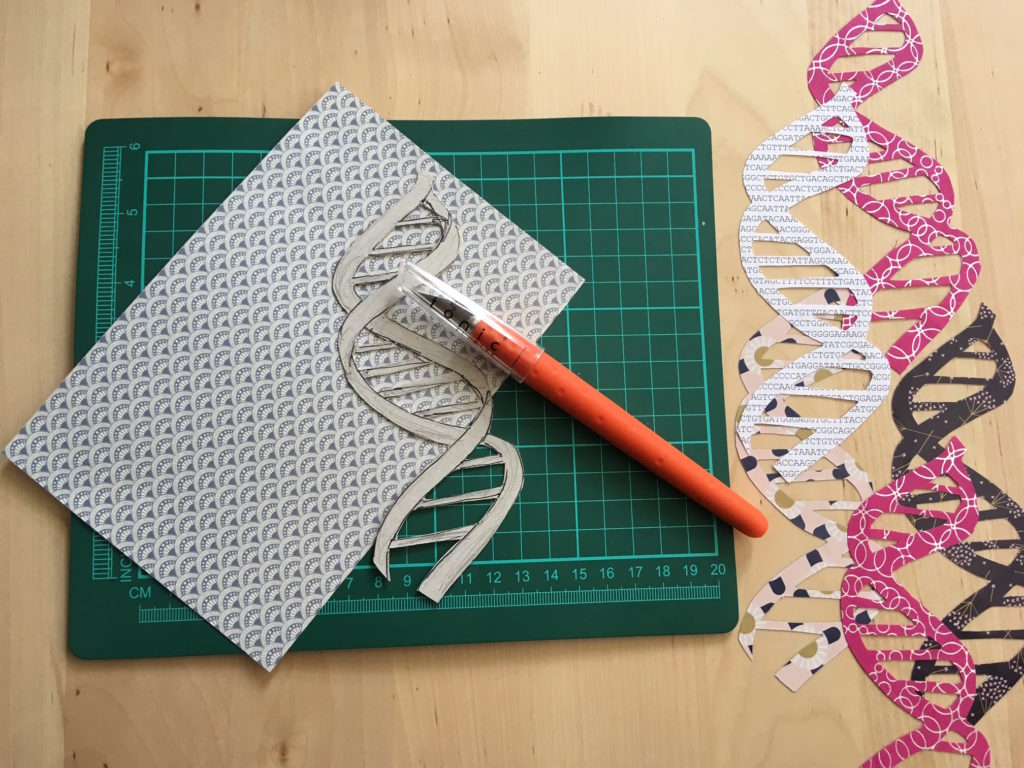 DNA paper cutting