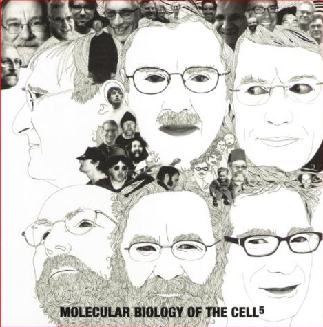 Molecular Biology Of The Cell 6th Pdf