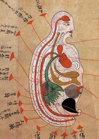 japanese medical book